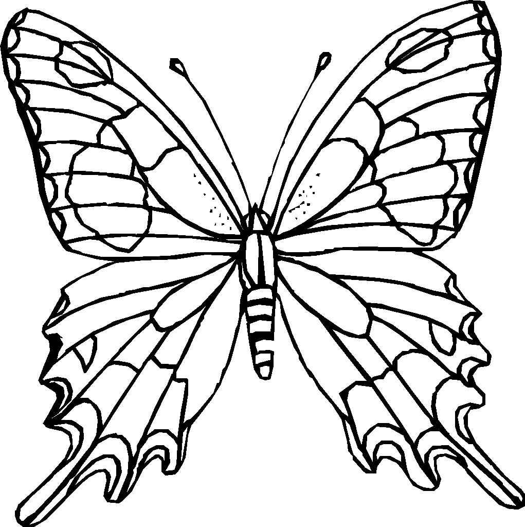 hình tô màu con bướm xinh cho bé